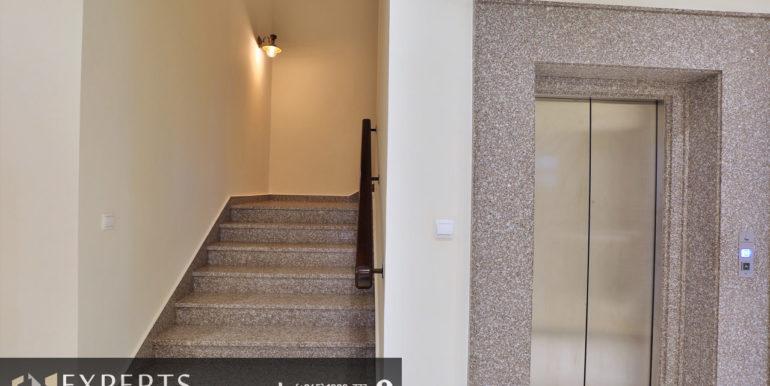 Luxury Villa in Al Siddiq136A3376